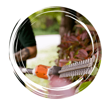 Limetree-Ground-Maintenance-Hedge-Trimming-Surrey
