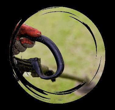 Limetree-Ground-Maintenance-Sussex-strimming